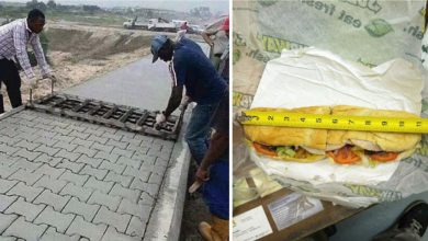 Photo of 14 Image That Proves Everything You Know is a Lie.