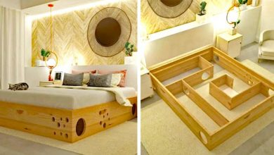 Photo of Company Creates Special Maze Bed Perfect For Cats And Their Human Friends