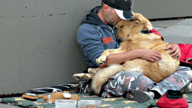 Photo of 15 Photos That Prove That There Is No Love Like That Of A Man And His Dog.