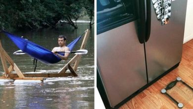 Photo of 18 Too Witty People Who Will Never Have A Hard Day In Their Life