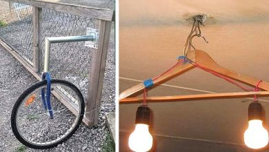 Photo of 11 strokes of genius with which people have solved their daily small-big problems