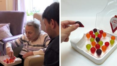 Photo of Boy Invents 'water To Eat' To Help Dementia Patients Stay Hydrated.