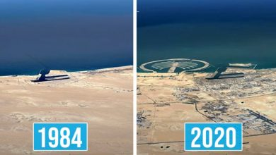 Photo of How Has The Earth Changed Over The Past 36 Years? Google Earth Shows Us With Its Timelapses.