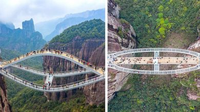 Photo of This Corrugated Glass Bridge Hangs 140 Meters Above A Ravine. The Photos Make You Dizzy.