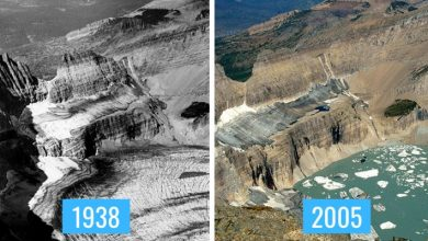 Photo of 8 Photo Comparisons Show Us The Devastating Effects Of Climate Change.