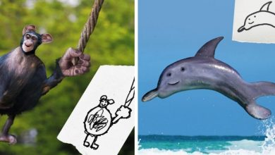 Photo of Father Brings Children's Drawings To Life And Turns Them Into Bizarre-looking Animals.