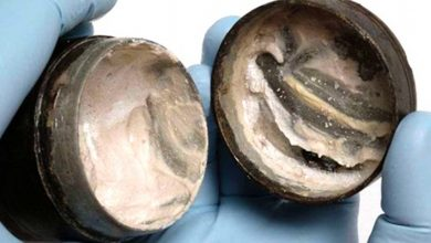 Photo of Archaeologists find 2,000-year-old face cream still had fingerprints on it