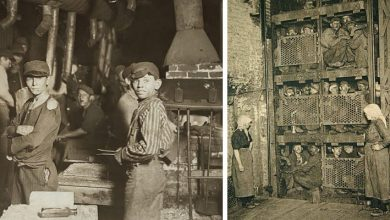 Photo of Is Office Work Hard? These 20 Vintage Photos Show Some Of The Toughest Jobs Of The Past.