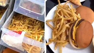 Photo of Mom Preserves Fast Food For Years And Proves They Stay Intact.
