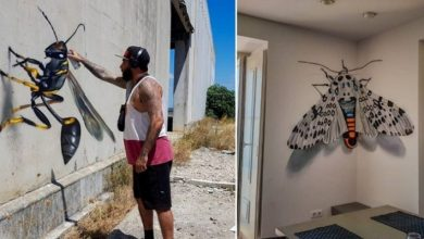 Photo of This Street Artist Has Created A Series Of Murals With A Surprising Three-dimensional Effect.