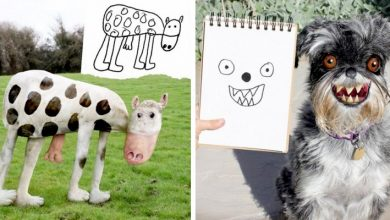 """Photo of Father Uses Photoshop To """"Bring To Life"""" His Two Children's Stylized Drawings: The Results Are Hilarious."""