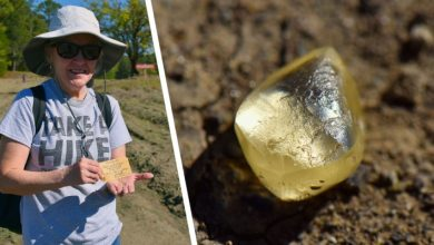 Photo of Woman Finds Stone In Public Park, Then Finds Out It's A 4-carat Yellow Diamond.